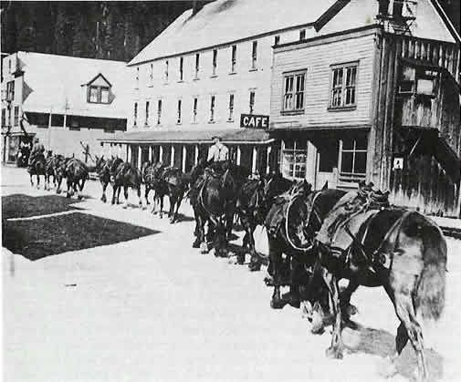 Herb Charlton with his pack train enroute to the Porter Idaho Claims